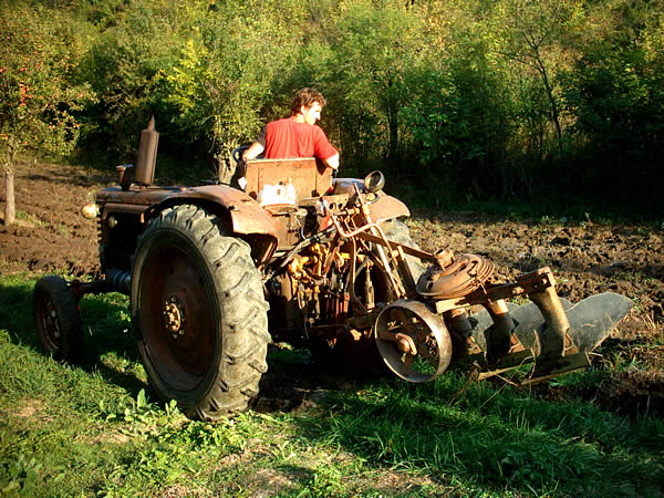 Ivan ploughing the field.