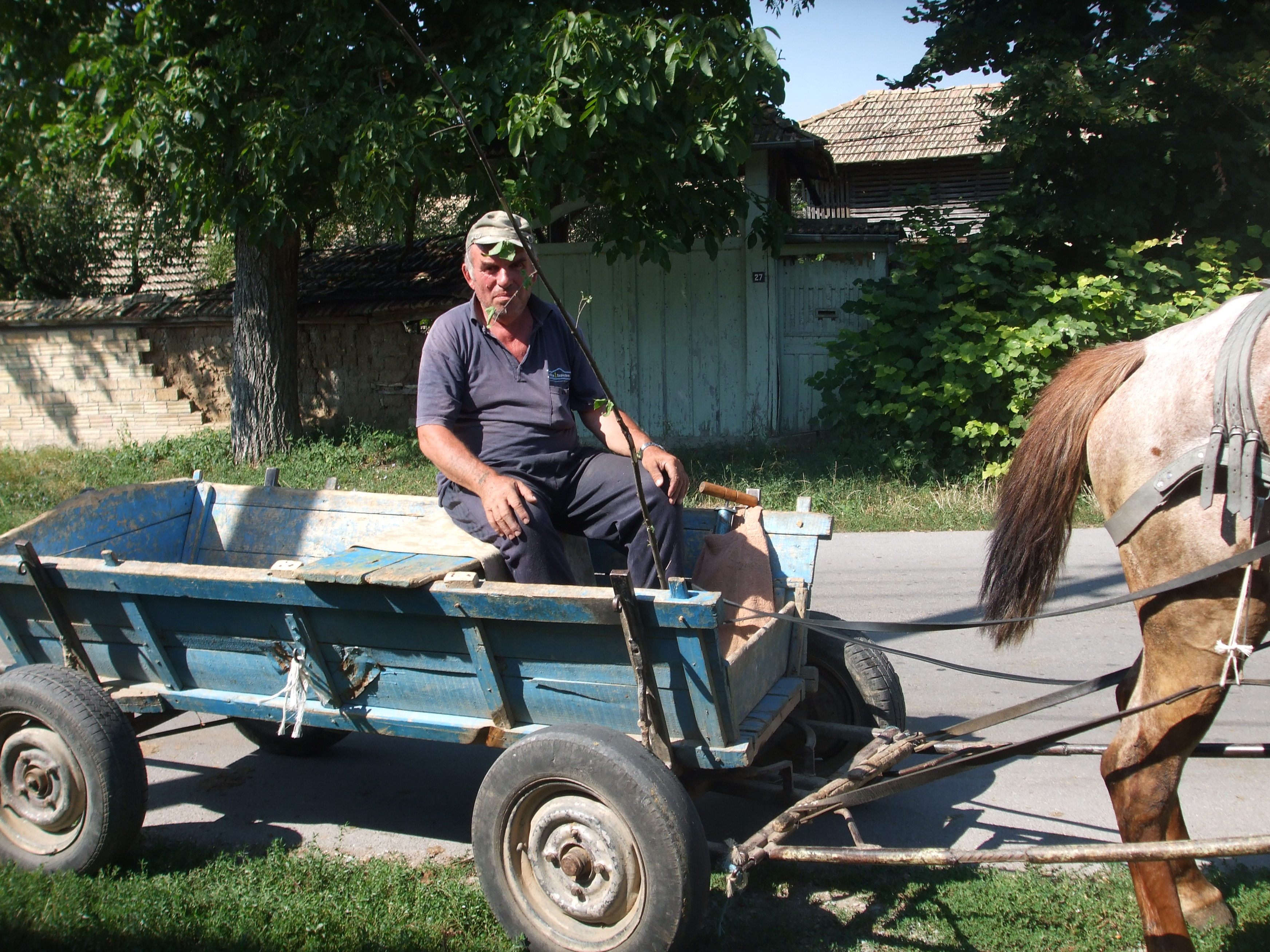 a guy on a cart