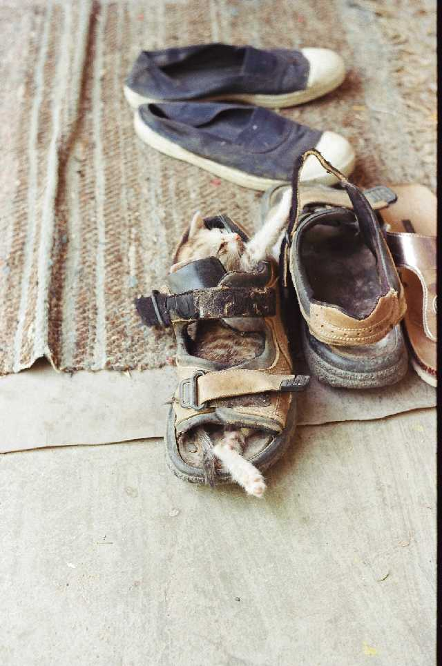Little Jackie loved shoes