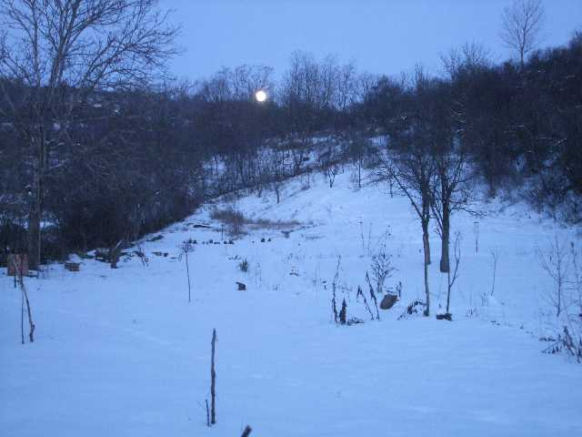 moon rise in the winter