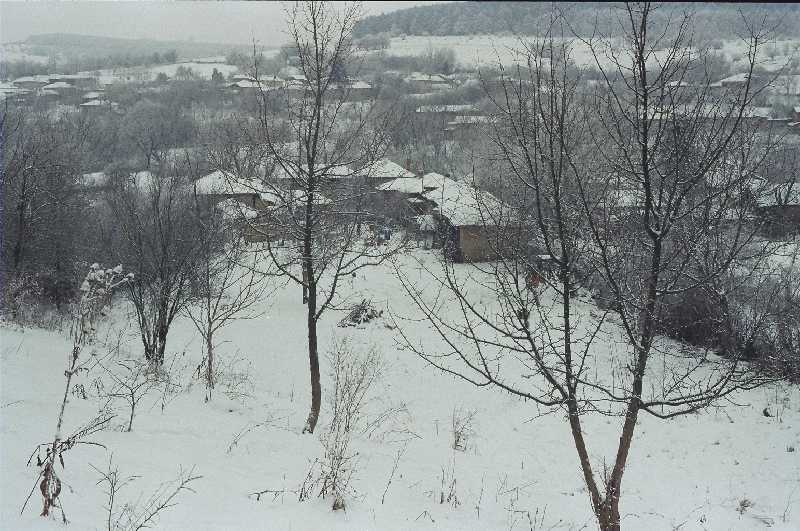 from the hill in January